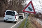 Dopravní značka informující řidiče o možné migraci žab (foto ČSOP)
