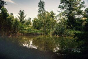 Zahrada Ekocentra Dúbrava díky dobrovolníkům už léta slouží jako živá učebna
