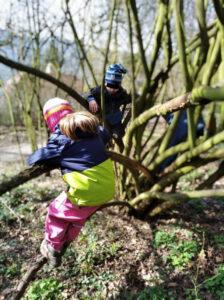 Lezeme po stromech (Asociace lesních MŠ)